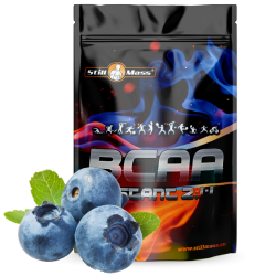 BCAA 2:1:1 Instant 1kg |Blueberry