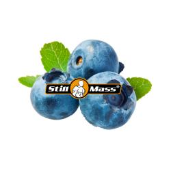 Extraiont   1kg |Blueberry