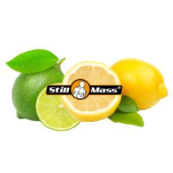 BEFORE SPORT 1kg |Lime/Lemon
