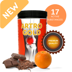 Artro Gold  |chocolate/orange  750g
