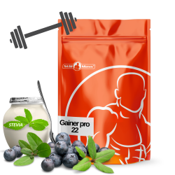 Gainer pro 22 4kg |Blueberry/yogurt